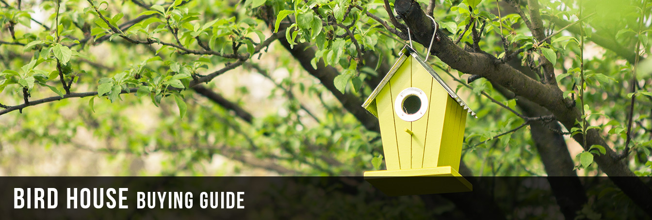 Tremendous Bird House Buying Guide At Menards Home Interior And Landscaping Palasignezvosmurscom