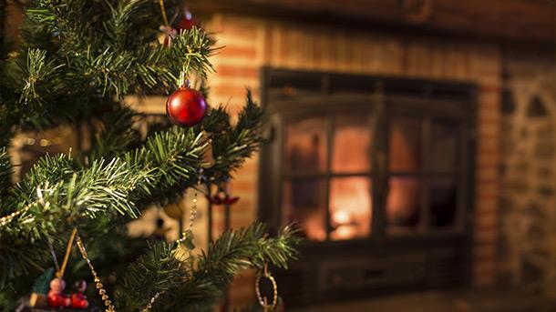 Christmas Tree Preservative.Christmas Tree Care At Menards