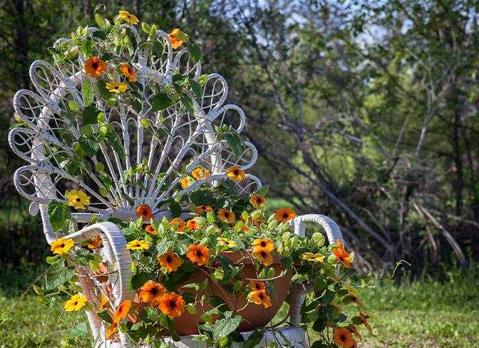 Tremendous Vertical Gardening At Menards Short Links Chair Design For Home Short Linksinfo