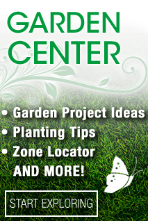 Garden Center. Garden project ideas, planting tips, zone locator and more. Click here to start exploring.