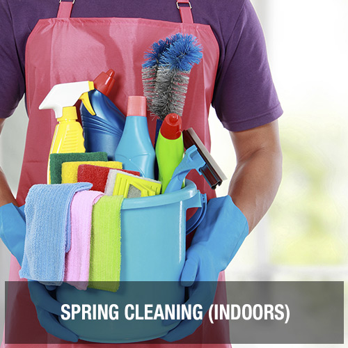Spring Cleaning (Indoors)