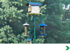 Bird Feeders & Squirrel Baffles